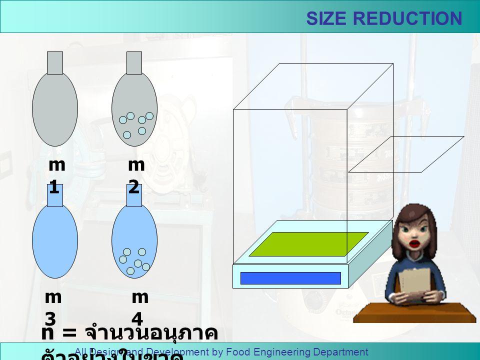 All Design and Development by Food Engineering Department SIZE REDUCTION วิธี ทดลอง 1. หาขนาดเฉลี่ยของตัวอย่าง ก่อนบด โดยเริ่มจากการหา ปริมาตรของอนุภา
