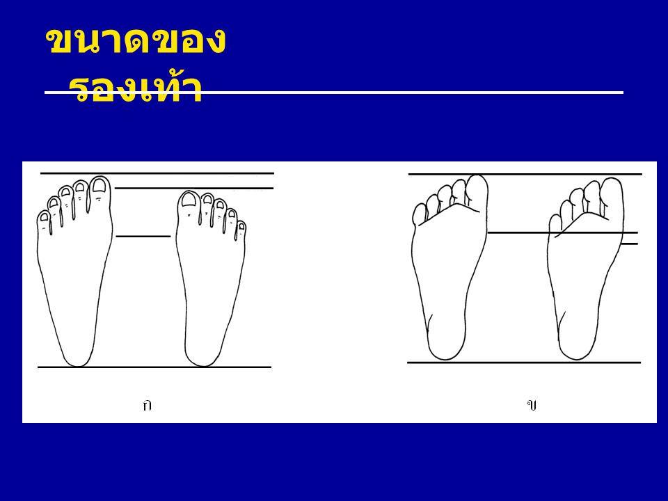 ขนาดของ รองเท้า