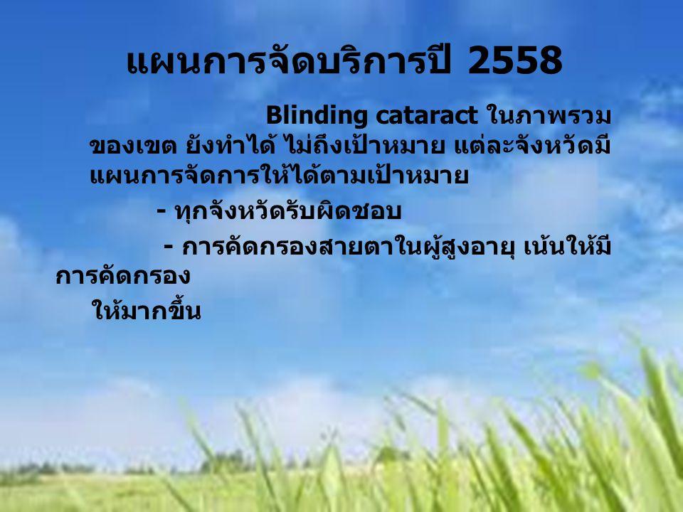 Blinding cataract ในภาพรวม ของเขต ยังทำได้ ไม่ถึงเป้าหมาย แต่ละจังหวัดมี แผนการจัดการให้ได้ตามเป้าหมาย - ทุกจังหวัดรับผิดชอบ - การคัดกรองสายตาในผู้สูง