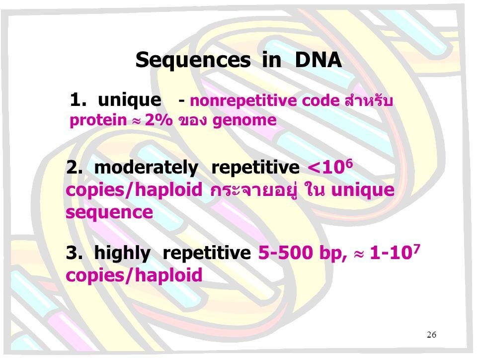 Sequences in DNA 1. unique - nonrepetitive code สำหรับ protein  2% ของ genome 2. moderately repetitive <10 6 copies/haploid กระจายอยู่ใน unique seque
