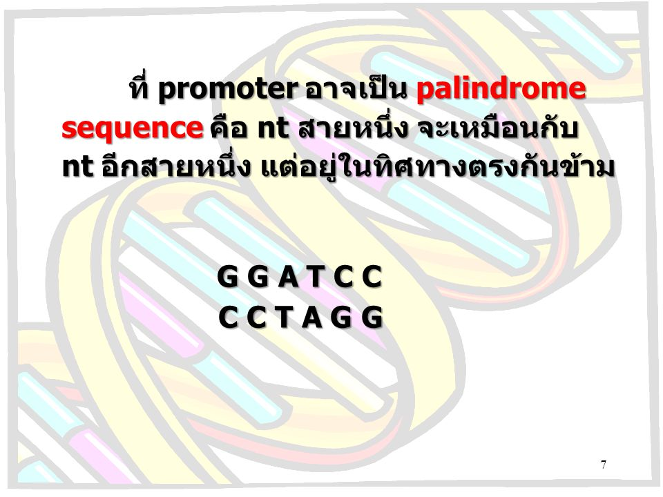 DNATTGACATATAAT Prokaryotic promoter site template PRIBNOW BOX START OF RNA 5 -35-10+1 Eukaryotic promoter site DNA GGNCAATCT GCTATA 5 -75-25+1 template CAAT BOX TATABOX (HOGNESS BOX) 8