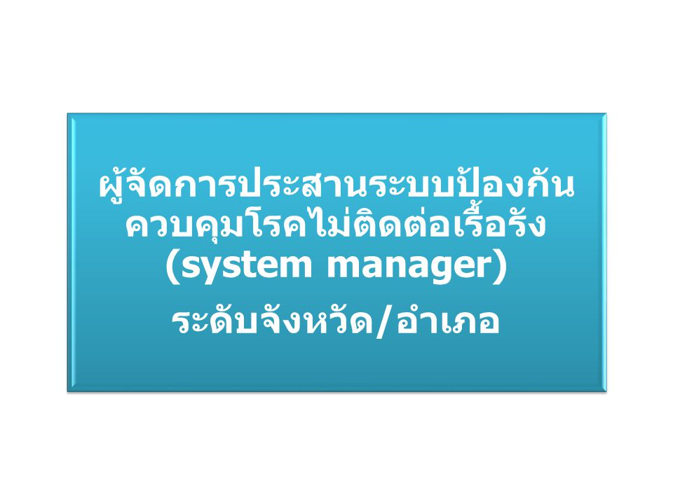 ผู้จัดการประสานระบบป้องกัน ควบคุมโรคไม่ติดต่อเรื้อรัง (system manager) ระดับจังหวัด/อำเภอ