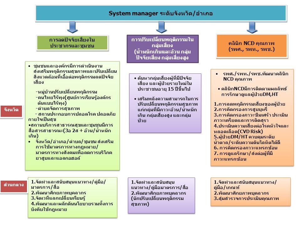 System manager ระดับจังหวัด/อำเภอ การลดปัจจัยเสี่ยงใน ประชากรและชุมชน การปรับเปลี่ยนพฤติกรรมใน กลุ่มเสี่ยง (น้ำหนักเกินและอ้วน กลุ่ม ปัจจัยเสี่ยง กลุ่