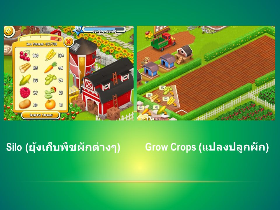 Silo ( ยุ้งเก็บพืชผักต่างๆ ) Grow Crops ( แปลงปลูกผัก )