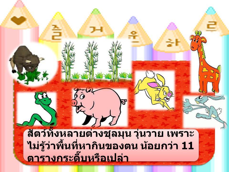 สัตว์ทั้งหลายต่างชุลมุน วุ่นวาย เพราะ ไม่รู้ว่าพื้นที่หากินของตน น้อยกว่า 11 ตารางกระดึ๊บหรือเปล่า