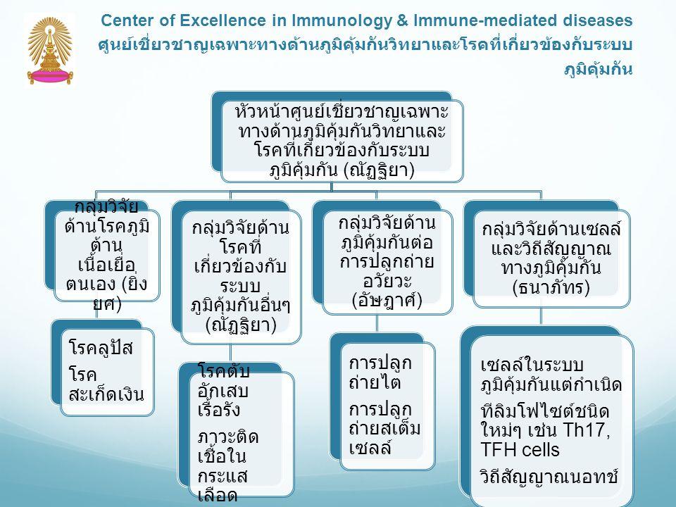 หัวหน้าศูนย์เชี่ยวชาญเฉพาะ ทางด้านภูมิคุ้มกันวิทยาและ โรคที่เกี่ยวข้องกับระบบ ภูมิคุ้มกัน ( ณัฏฐิยา ) กลุ่มวิจัย ด้านโรคภูมิ ต้าน เนื้อเยื่อ ตนเอง ( ยิ่ง ยศ ) โรคลูปัส โรค สะเก็ดเงิน กลุ่มวิจัยด้าน โรคที่ เกี่ยวข้องกับ ระบบ ภูมิคุ้มกันอื่นๆ ( ณัฏฐิยา ) โรคตับ อักเสบ เรื้อรัง ภาวะติด เชื้อใน กระแส เลือด กลุ่มวิจัยด้าน ภูมิคุ้มกันต่อ การปลูกถ่าย อวัยวะ ( อัษฎาศ์ ) การปลูก ถ่ายไต การปลูก ถ่ายสเต็ม เซลล์ กลุ่มวิจัยด้านเซลล์ และวิถีสัญญาณ ทางภูมิคุ้มกัน ( ธนาภัทร ) เซลล์ในระบบ ภูมิคุ้มกันแต่กำเนิด ทีลิมโฟไซต์ชนิด ใหม่ๆ เช่น Th17, TFH cells วิถีสัญญาณนอทช์ Center of Excellence in Immunology & Immune-mediated diseases ศูนย์เชี่ยวชาญเฉพาะทางด้านภูมิคุ้มกันวิทยาและโรคที่เกี่ยวข้องกับระบบ ภูมิคุ้มกัน
