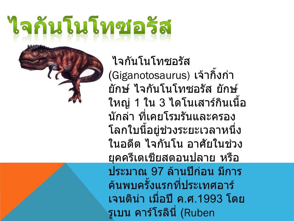 ไจกันโนโทซอรัส (Giganotosaurus) เจ้ากิ้งก่า ยักษ์ ไจกันโนโทซอรัส ยักษ์ ใหญ่ 1 ใน 3 ไดโนเสาร์กินเนื้อ นักล่า ที่เคยโรมรันและครอง โลกใบนี้อยู่ช่วงระยะเวลาหนึ่ง ในอดีต ไจกันโน อาศัยในช่วง ยุคครีเตเชียสตอนปลาย หรือ ประมาณ 97 ล้านปีก่อน มีการ ค้นพบครั้งแรกที่ประเทศอาร์ เจนติน่า เมื่อปี ค.