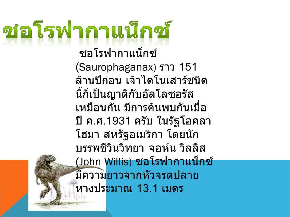 ซอโรฟากาแน็กซ์ (Saurophaganax) ราว 151 ล้านปีก่อน เจ้าไดโนเสาร์ชนิด นี้ก็เป็นญาติกับอัลโลซอรัส เหมือนกัน มีการค้นพบกันเมื่อ ปี ค. ศ.1931 ครับ ในรัฐโอค