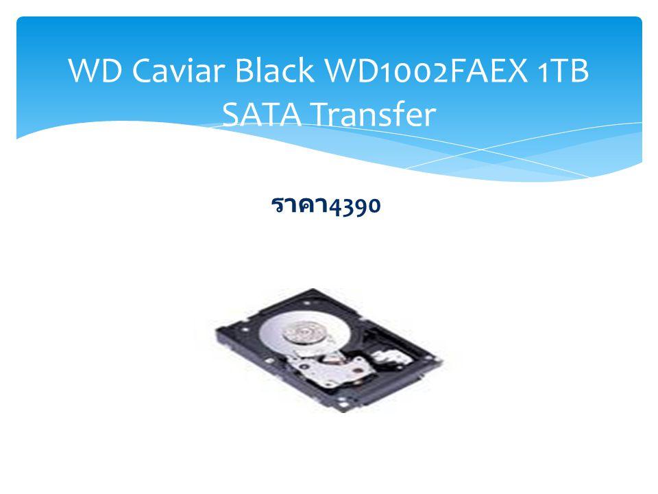 WD Caviar Black WD1002FAEX 1TB SATA Transfer ราคา 4390