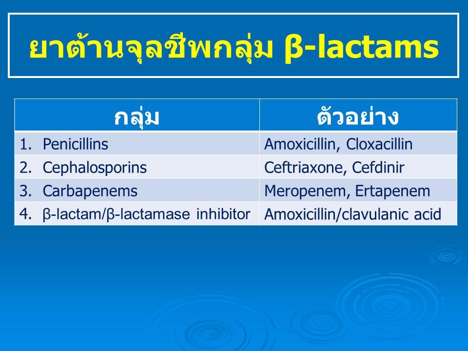 ยาต้านจุลชีพกลุ่ม β-lactams กลุ่มตัวอย่าง 1.PenicillinsAmoxicillin, Cloxacillin 2.CephalosporinsCeftriaxone, Cefdinir 3.CarbapenemsMeropenem, Ertapenem 4.
