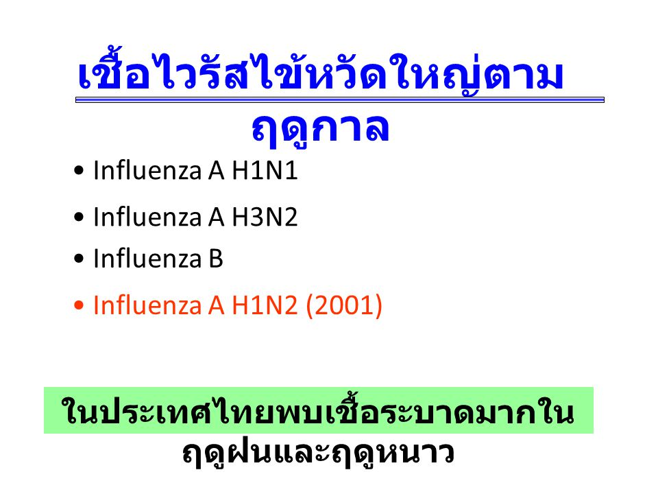 เชื้อไวรัสไข้หวัดใหญ่ตาม ฤดูกาล Influenza A H3N2 Influenza A H1N1 Influenza B Influenza A H1N2 (2001) ในประเทศไทยพบเชื้อระบาดมากใน ฤดูฝนและฤดูหนาว