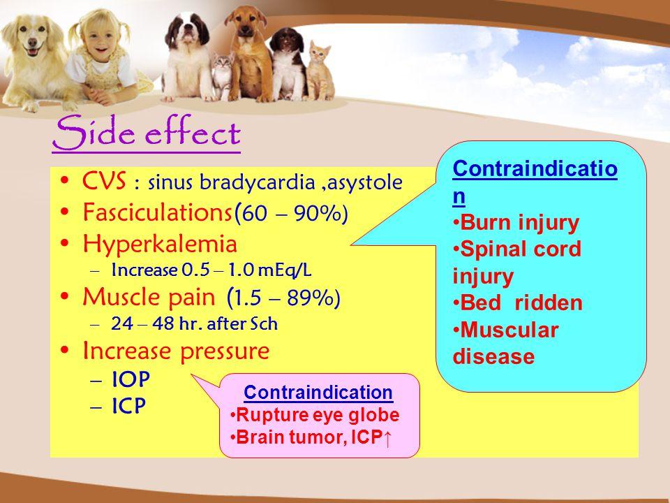 Side effect CVS : sinus bradycardia,asystole Fasciculations( 60 – 90%) Hyperkalemia –Increase 0.5 – 1.0 mEq/L Muscle pain ( 1.5 – 89%) –24 – 48 hr.