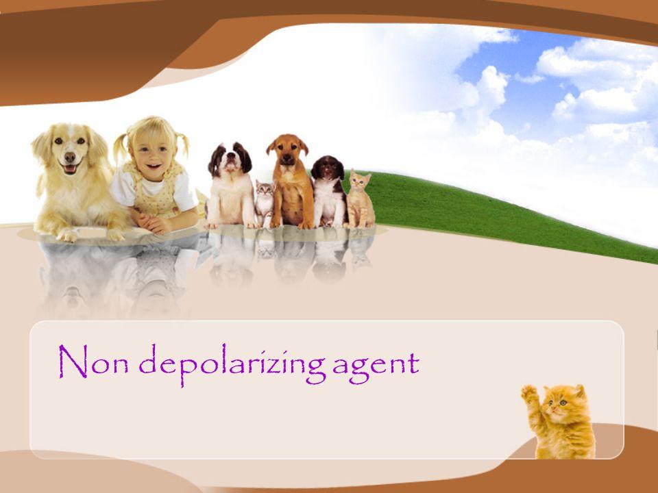 Non depolarizing agent