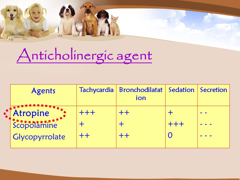 Anticholinergic agent Agents TachycardiaBronchodilatat ion SedationSecretion Atropine Scopolamine Glycopyrrolate +++ + ++ + ++ + +++ 0 - - - -