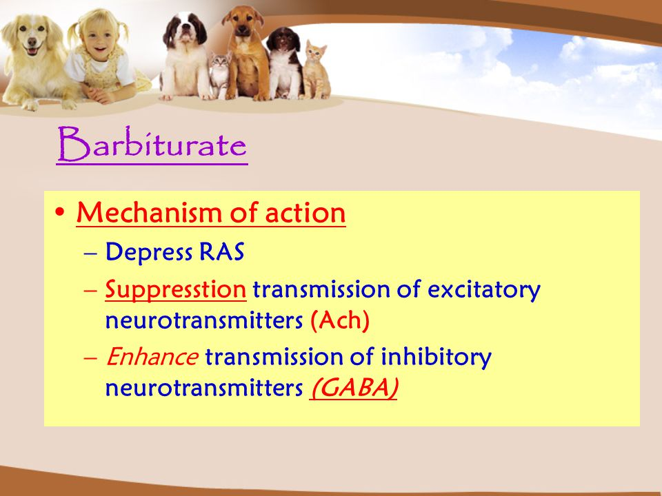 Barbiturate Mechanism of action –Depress RAS –Suppresstion transmission of excitatory neurotransmitters (Ach) –Enhance transmission of inhibitory neur