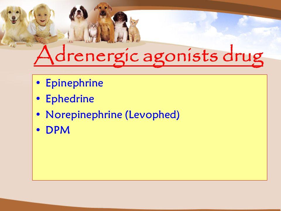 Adrenergic agonists drug Epinephrine Ephedrine Norepinephrine (Levophed) DPM