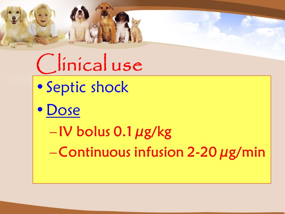 Clinical use Septic shock Dose –IV bolus 0.1 µg/kg –Continuous infusion 2-20 µg/min
