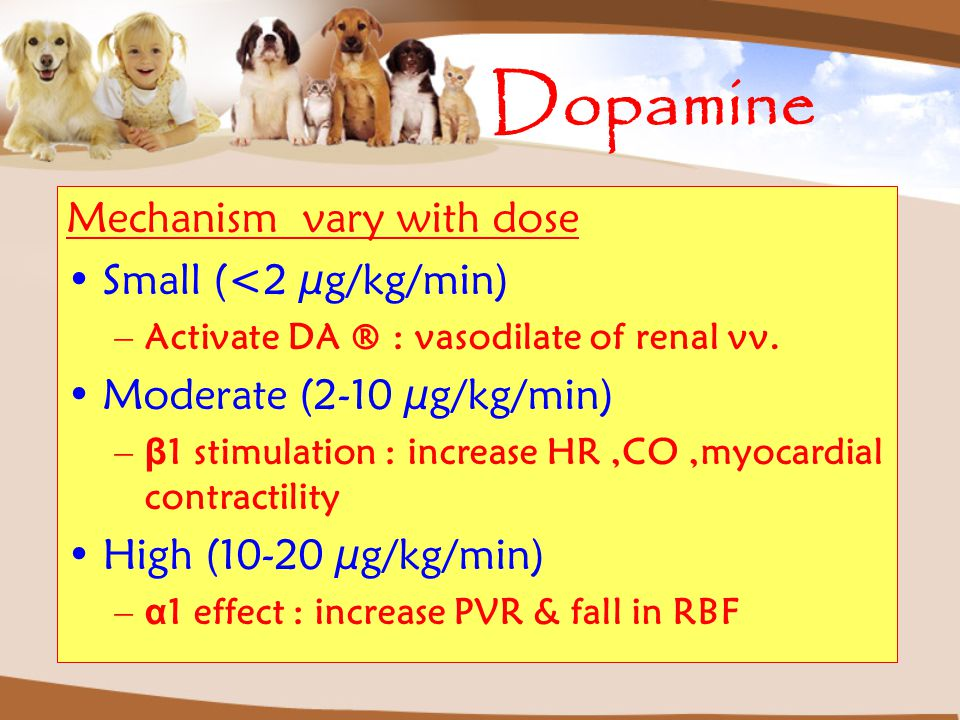 Dopamine Mechanism vary with dose Small (<2 µg/kg/min) –Activate DA ® : vasodilate of renal vv. Moderate (2-10 µg/kg/min) – β 1 stimulation : increase