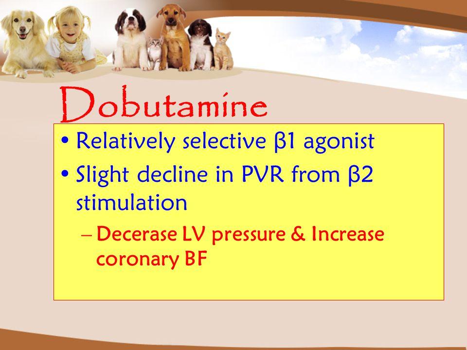 Dobutamine Relatively selective β 1 agonist Slight decline in PVR from β 2 stimulation –Decerase LV pressure & Increase coronary BF