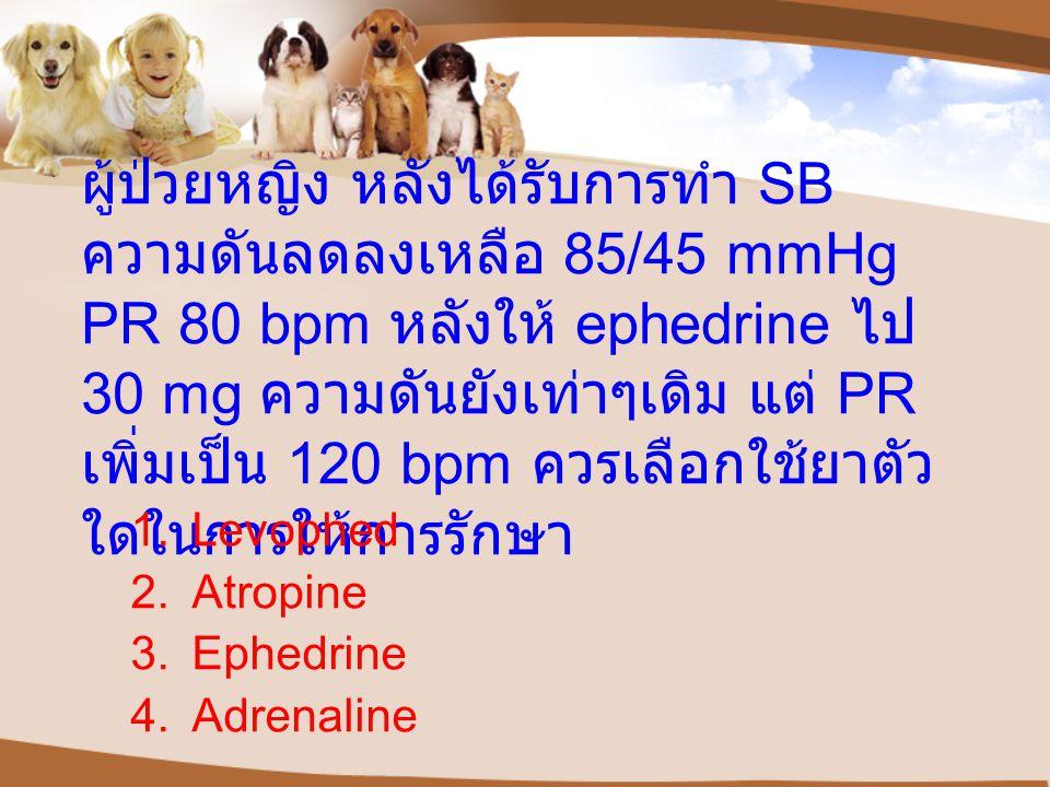 ผู้ป่วยหญิง หลังได้รับการทำ SB ความดันลดลงเหลือ 85/45 mmHg PR 80 bpm หลังให้ ephedrine ไป 30 mg ความดันยังเท่าๆเดิม แต่ PR เพิ่มเป็น 120 bpm ควรเลือกใช้ยาตัว ใดในการให้การรักษา 1.Levophed 2.Atropine 3.Ephedrine 4.Adrenaline