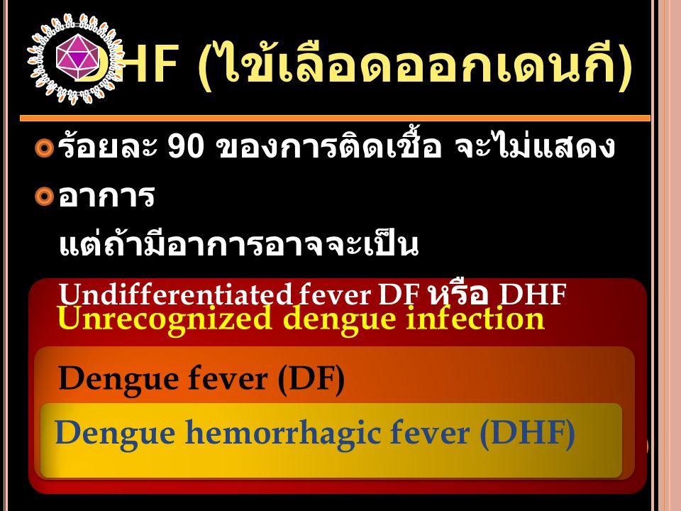 Unrecognized dengue infection Dengue fever (DF) Dengue hemorrhagic fever (DHF) ร้อยละ 90 ของการติดเชื้อ จะไม่แสดง อาการ แต่ถ้ามีอาการอาจจะเป็น Undiffe