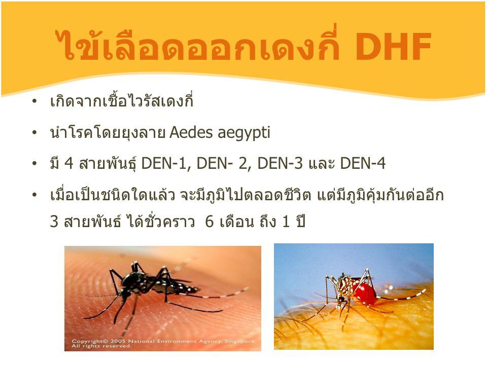 ไข้เลือดออกเดงกี่ DHF เกิดจากเชื้อไวรัสเดงกี่ นำโรคโดยยุงลาย Aedes aegypti มี 4 สายพันธุ์ DEN-1, DEN- 2, DEN-3 และ DEN-4 เมื่อเป็นชนิดใดแล้ว จะมีภูมิไ