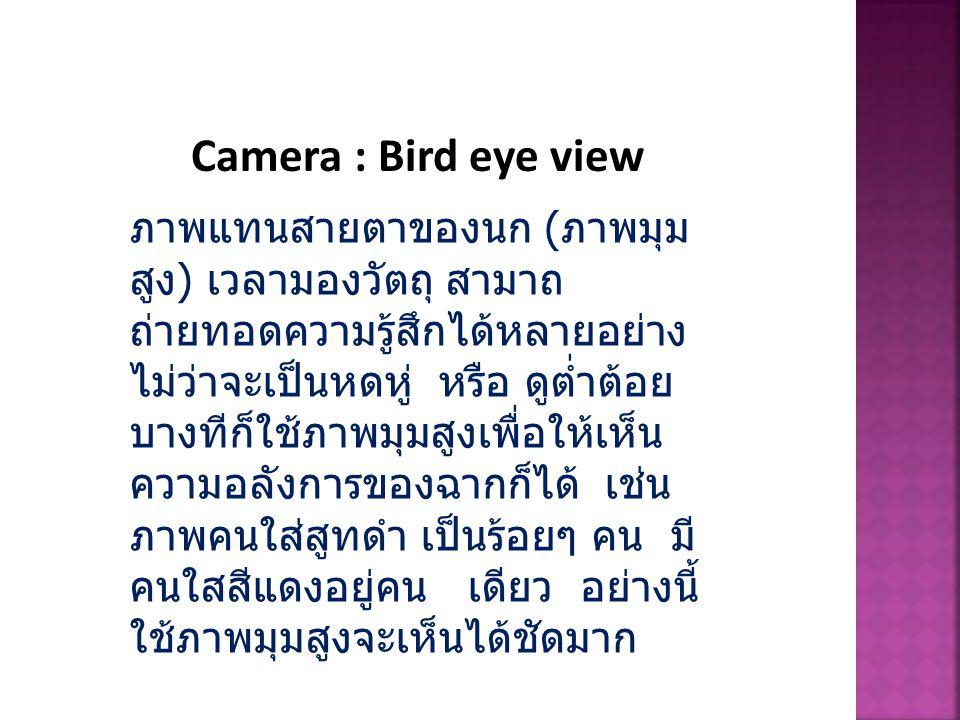 Camera : Bird eye view ภาพแทนสายตาของนก ( ภาพมุม สูง ) เวลามองวัตถุ สามาถ ถ่ายทอดความรู้สึกได้หลายอย่าง ไม่ว่าจะเป็นหดหู่ หรือ ดูต่ำต้อย บางทีก็ใช้ภาพ