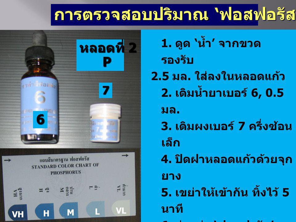 การตรวจสอบปริมาณ 'ฟอสฟอรัส' (P) 1. ดูด 'น้ำ' จากขวด รองรับ 2.5 มล. ใส่ลงในหลอดแก้ว 2. เติมน้ำยาเบอร์ 6, 0.5 มล. 3. เติมผงเบอร์ 7 ครึ่งซ้อน เล็ก 4. ปิด