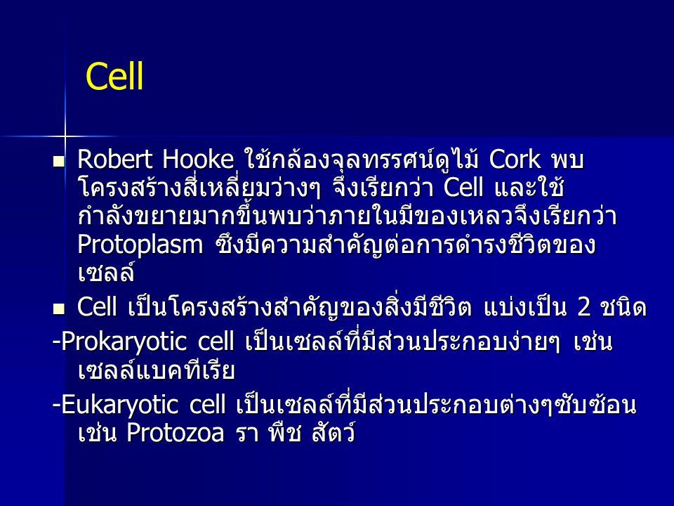 Cell Robert Hooke ใช้กล้องจุลทรรศน์ดูไม้ Cork พบ โครงสร้างสี่เหลี่ยมว่างๆ จึงเรียกว่า Cell และใช้ กำลังขยายมากขึ้นพบว่าภายในมีของเหลวจึงเรียกว่า Proto