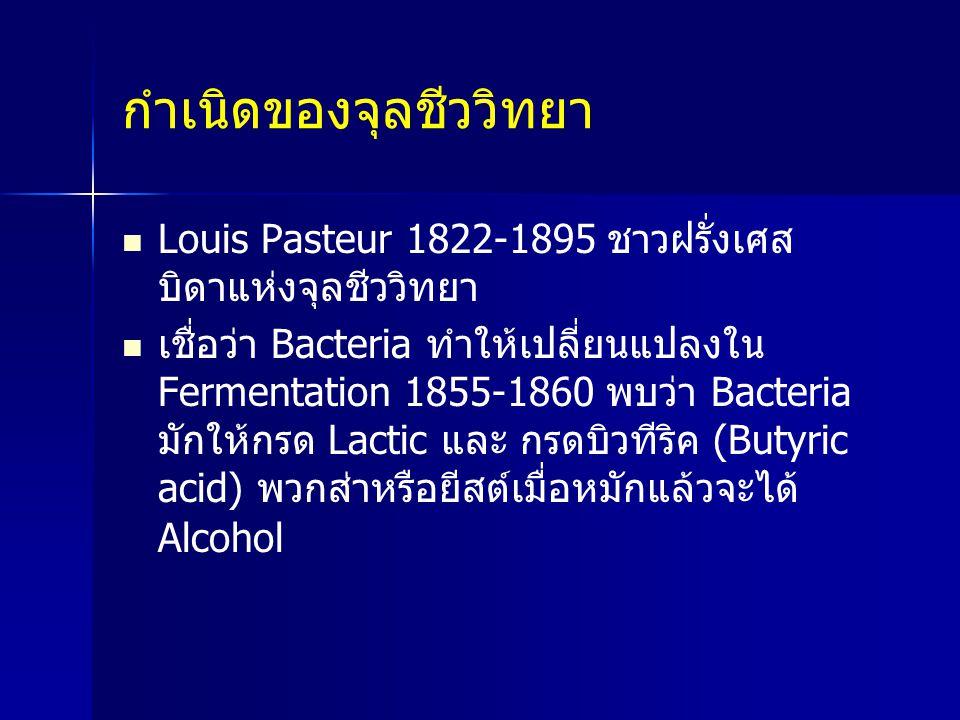 กำเนิดของจุลชีววิทยา Louis Pasteur 1822-1895 ชาวฝรั่งเศส บิดาแห่งจุลชีววิทยา เชื่อว่า Bacteria ทำให้เปลี่ยนแปลงใน Fermentation 1855-1860 พบว่า Bacteri