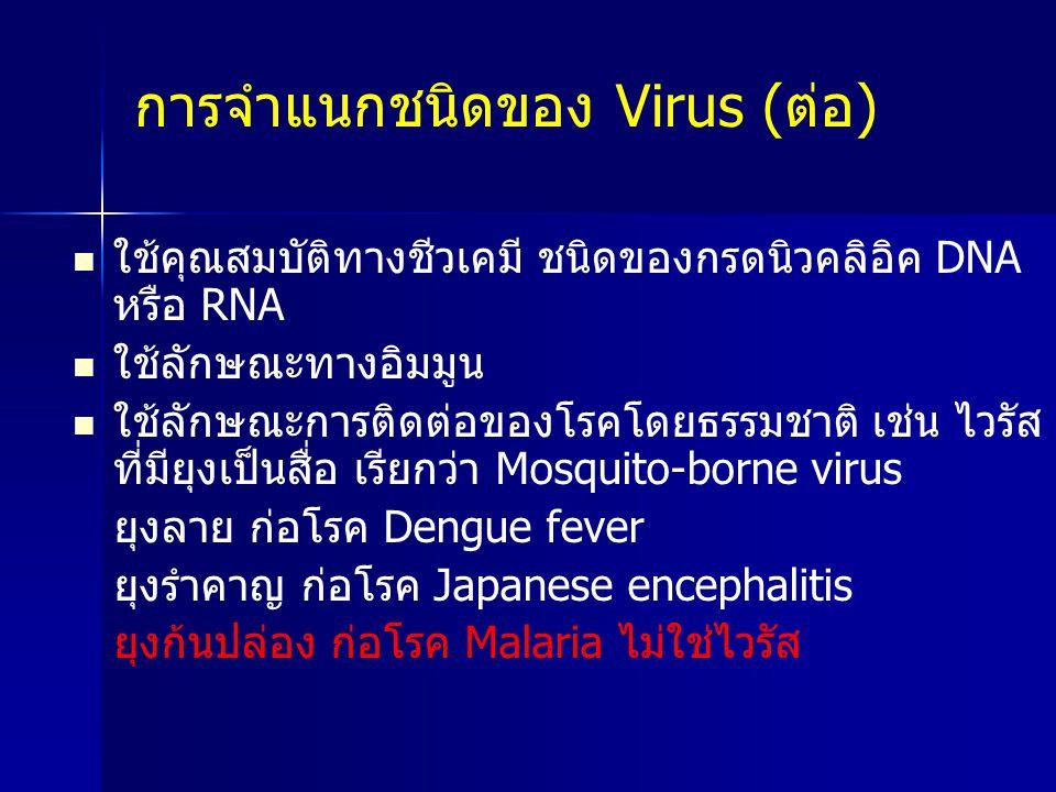 การจำแนกชนิดของ Virus (ต่อ) ใช้คุณสมบัติทางชีวเคมี ชนิดของกรดนิวคลิอิค DNA หรือ RNA ใช้ลักษณะทางอิมมูน ใช้ลักษณะการติดต่อของโรคโดยธรรมชาติ เช่น ไวรัส