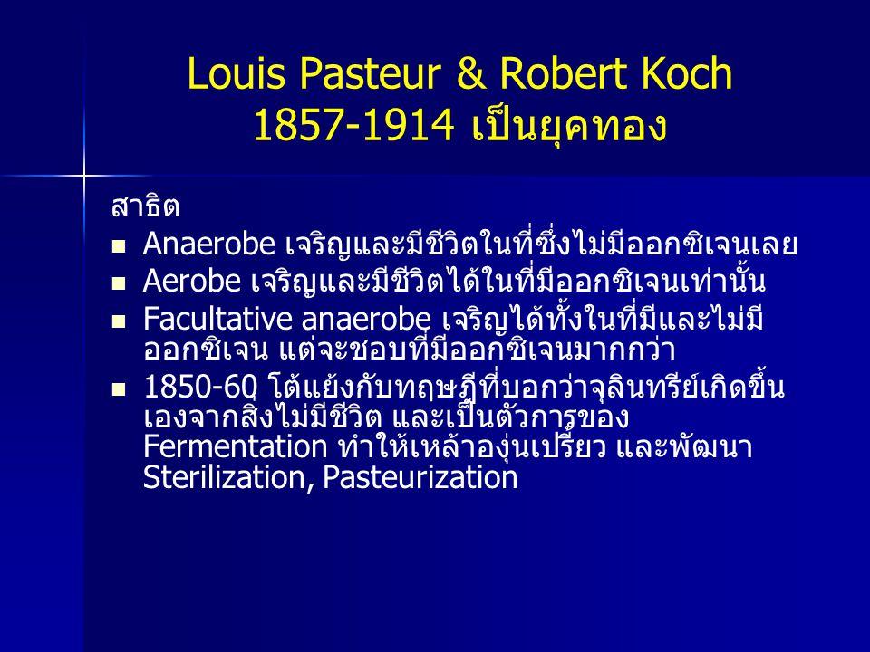 Louis Pasteur & Robert Koch 1857-1914 เป็นยุคทอง สาธิต Anaerobe เจริญและมีชีวิตในที่ซึ่งไม่มีออกซิเจนเลย Aerobe เจริญและมีชีวิตได้ในที่มีออกซิเจนเท่าน
