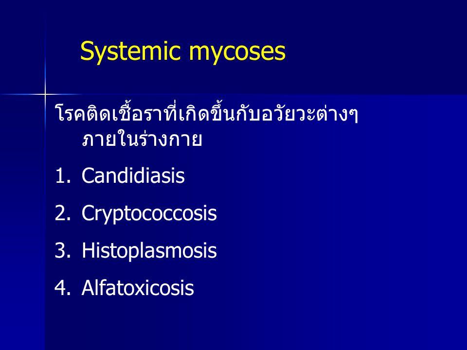 โรคติดเชื้อราที่เกิดขึ้นกับอวัยวะต่างๆ ภายในร่างกาย 1.Candidiasis 2.Cryptococcosis 3.Histoplasmosis 4.Alfatoxicosis Systemic mycoses