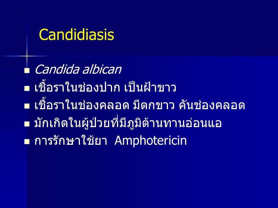 Candida albican เชื้อราในช่องปาก เป็นฝ้าขาว เชื้อราในช่องคลอด มีตกขาว คันช่องคลอด มักเกิดในผู้ป่วยที่มีภูมิต้านทานอ่อนแอ การรักษาใช้ยา Amphotericin Ca