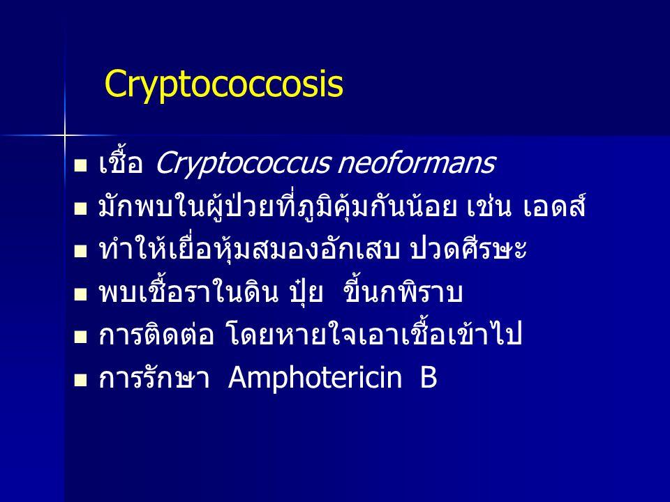 เชื้อ Cryptococcus neoformans มักพบในผู้ป่วยที่ภูมิคุ้มกันน้อย เช่น เอดส์ ทำให้เยื่อหุ้มสมองอักเสบ ปวดศีรษะ พบเชื้อราในดิน ปุ๋ย ขี้นกพิราบ การติดต่อ โ