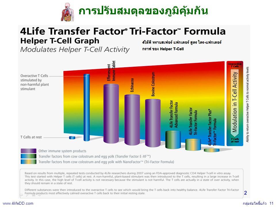 การปรับสมดุลของภูมิคุ้มกัน กลุ่มร่มโพธิ์แก้ว 11 www.4lifeDD.com
