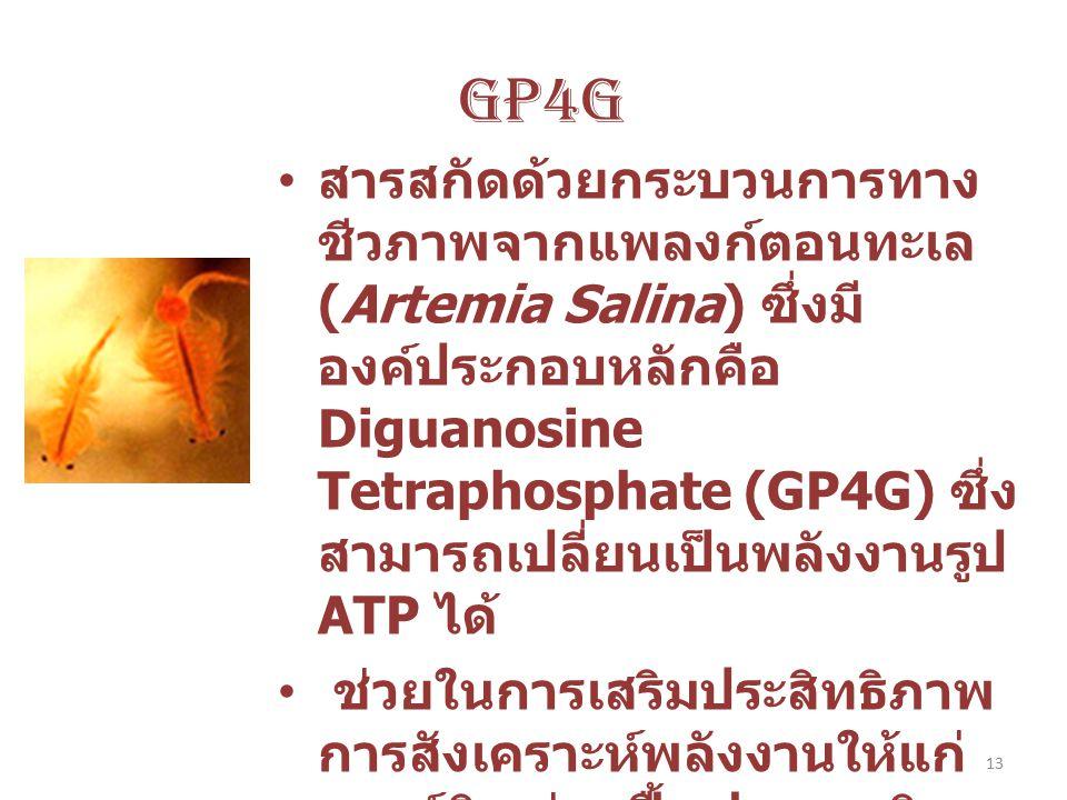 13 GP4G สารสกัดด้วยกระบวนการทาง ชีวภาพจากแพลงก์ตอนทะเล (Artemia Salina) ซึ่งมี องค์ประกอบหลักคือ Diguanosine Tetraphosphate (GP4G) ซึ่ง สามารถเปลี่ยนเ