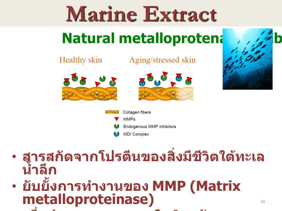 16 Natural metalloprotenase inhibitor สารสกัดจากโปรตีนของสิ่งมีชีวิตใต้ทะเล น้ำลึก ยับยั้งการทำงานของ MMP (Matrix metalloproteinase) ซึ่งทำลายคอลลาเจน
