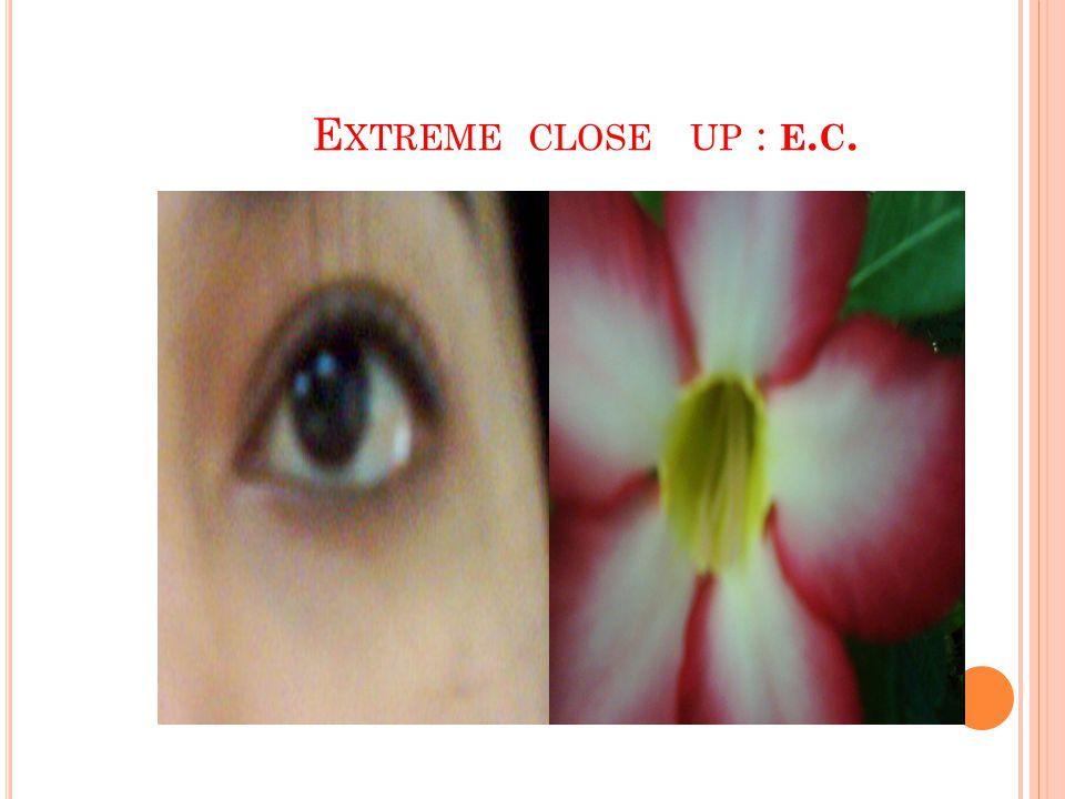 E XTREME CLOSE UP : E. C.
