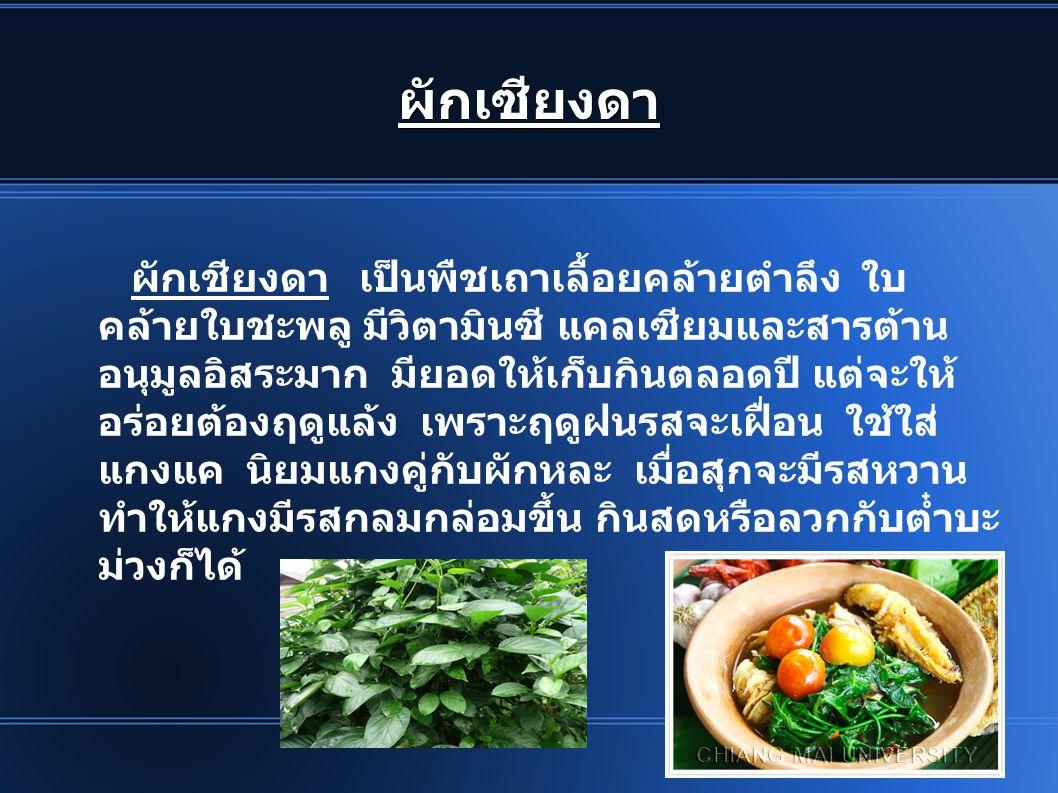 ผักเซียงดา ผักเชียงดา เป็นพืชเถาเลื้อยคล้ายตำลึง ใบ คล้ายใบชะพลู มีวิตามินซี แคลเซียมและสารต้าน อนุมูลอิสระมาก มียอดให้เก็บกินตลอดปี แต่จะให้ อร่อยต้อ