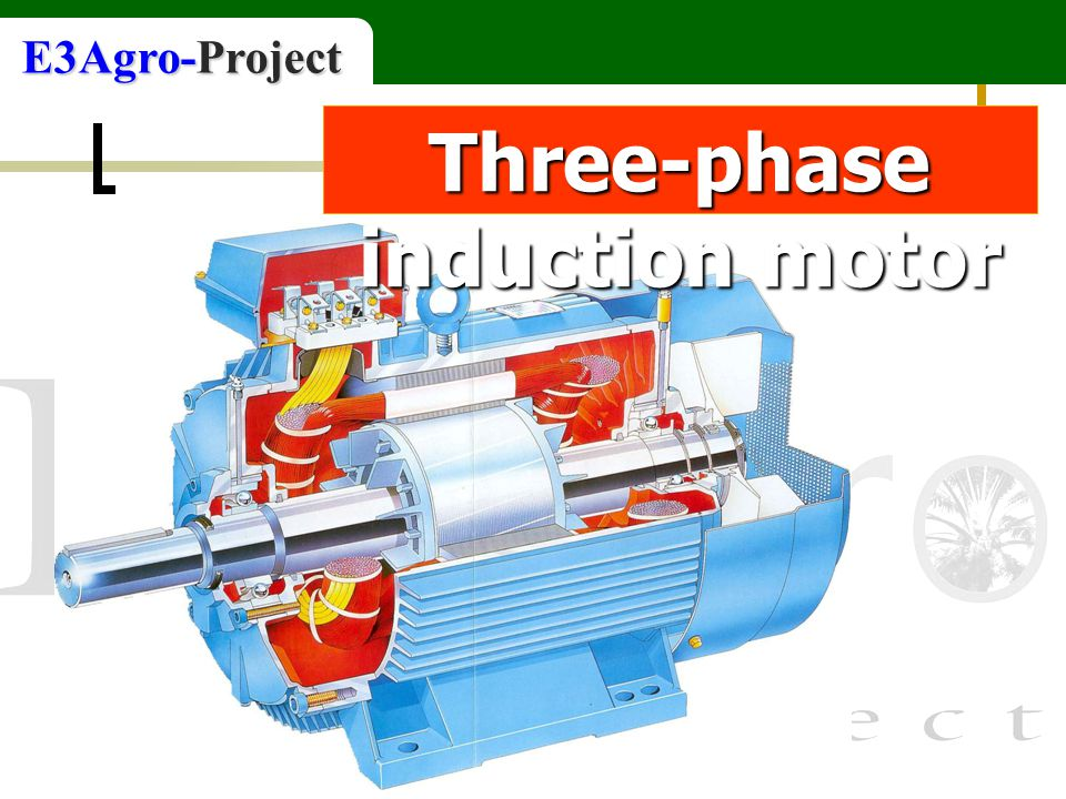 E3Agro-Project Three-phase induction motor