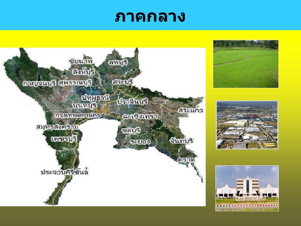 พัฒนาคุณภาพคน และสังคมไทยสู่สังคม แห่งภูมิปัญญา และ การเรียนรู้ สร้างความเข้มแข็งของ ชุมชนและสังคมเป็น รากฐานที่มั่นคงของ ประเทศ ปรับโครงสร้าง เศรษฐกิ