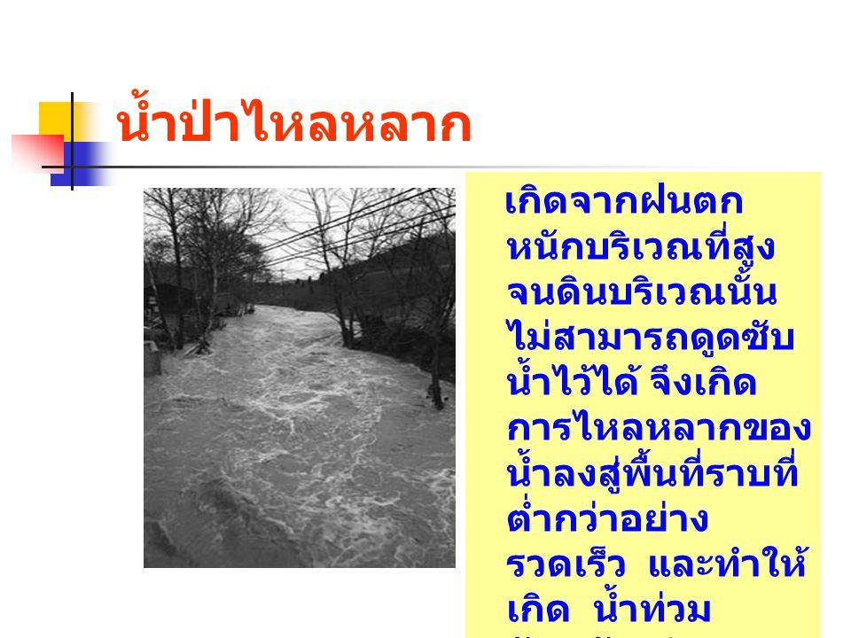 น้ำป่าไหลหลาก เกิดจากฝนตก หนักบริเวณที่สูง จนดินบริเวณนั้น ไม่สามารถดูดซับ น้ำไว้ได้ จึงเกิด การไหลหลากของ น้ำลงสู่พื้นที่ราบที่ ต่ำกว่าอย่าง รวดเร็ว