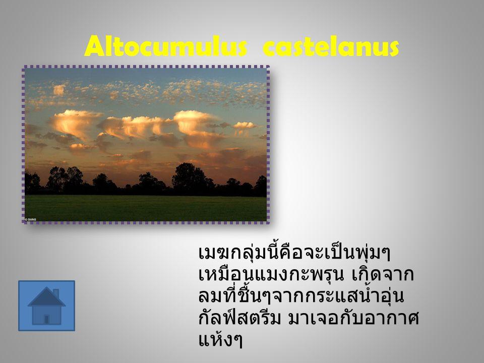 Nacreous เมฆ นี้เรียกได้ว่าเป็นไข่มุกแห่งเมฆาเลยทีเดียว เพราะสีนวลตาและหลากสี ทำให้เพลินตาดี ซึ่ง จะพบได้ที่แถบใกล้ๆขั้วโลกเช่นสแกนดิเนเวีย ตอนช่วงหน้าหนาว เวลาเย็นๆที่แสงอาทิตย์ส่อง ผ่าน เป็นเวลา 2 ชั่วโมงเท่านั้นที่เราจะเห็นแบบนี้
