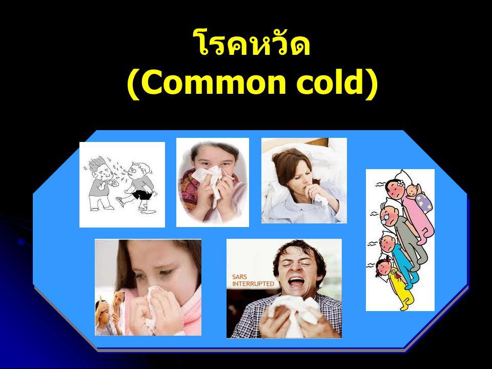 โรคหวัด (Common cold)