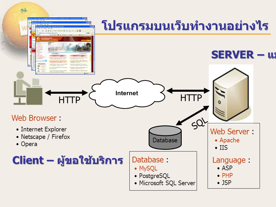 Web Browser : Internet Explorer Netscape / Firefox Opera Database HTTP SQL HTTP Web Server : Apache IIS Language : ASP PHP JSP Database : MySQL Postgr