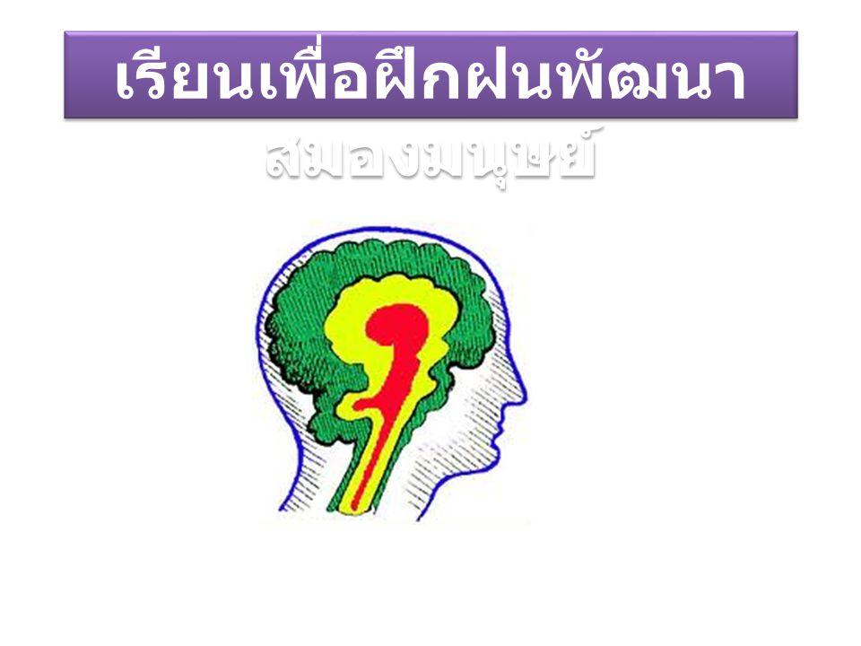 เรียนเพื่อฝึกฝนพัฒนา สมองมนุษย์