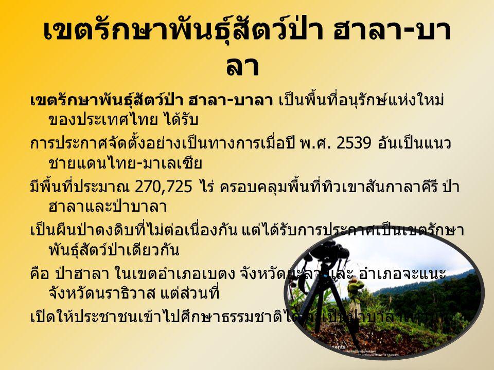 เขตรักษาพันธุ์สัตว์ป่า ฮาลา - บา ลา เขตรักษาพันธุ์สัตว์ป่า ฮาลา - บาลา เป็นพื้นที่อนุรักษ์แห่งใหม่ ของประเทศไทย ได้รับ การประกาศจัดตั้งอย่างเป็นทางการ