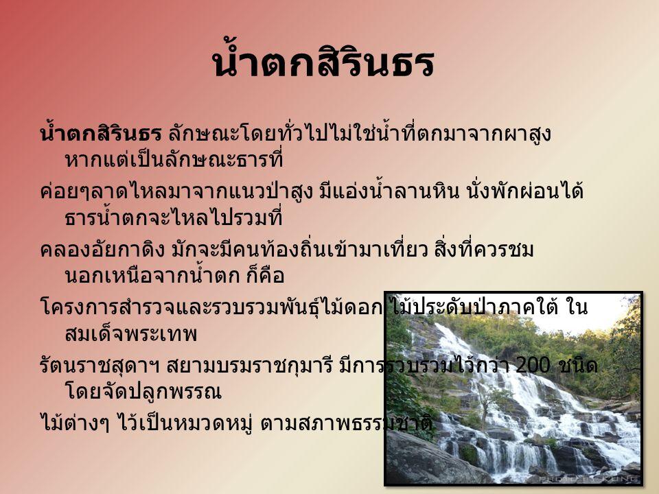 น้ำตกสิรินธร น้ำตกสิรินธร ลักษณะโดยทั่วไปไม่ใช่น้ำที่ตกมาจากผาสูง หากแต่เป็นลักษณะธารที่ ค่อยๆลาดไหลมาจากแนวป่าสูง มีแอ่งน้ำลานหิน นั่งพักผ่อนได้ ธารน