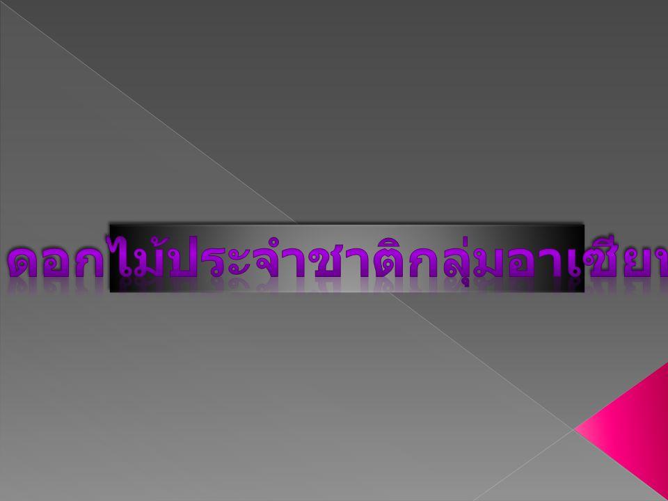 สิงคโปร์บรูไนดารุสา ลาม ไทย ลาวเมียนมาร์ เวียดนาม ฟิลิปปินส์กัมพูชามาเลเซีย อินโดนีเซียบรรณานุกร ม ดอกไม้ประจําชาติอาเซียน 10 ประเทศ National Flowers of 10 ASEAN Countries